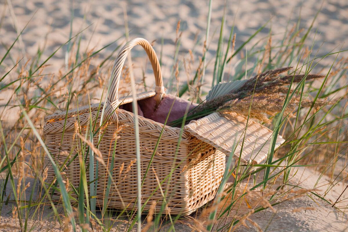 Piknika grozs