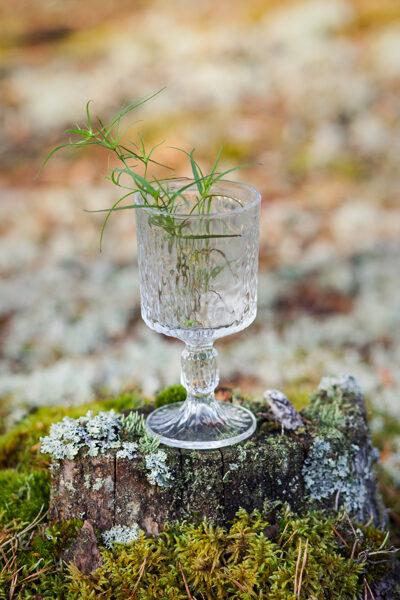 Stikla glāze uz kājas